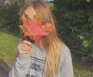 autumn, fall, and live image