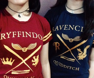 fan, fred and george, and gryffindor image