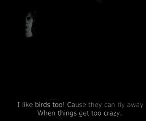 quote, tiolet, and evan peters image
