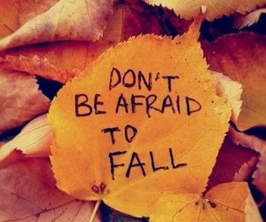 fall, quote, and perfect image