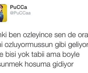 pucca, turkce, and sözler image