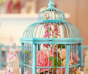flowers, blue, and cage image