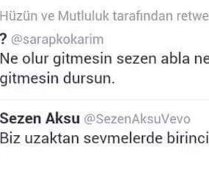 sezen aksu, turkce, and gitme image