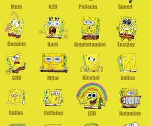 alcohol, drugs, and funny image
