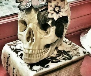 cake, skull, and book image