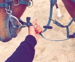 horse riding and خَيل image