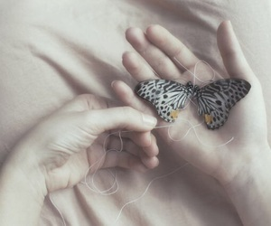 butterfly and hands image