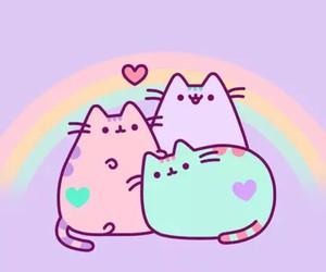 pusheen, cat, and rainbow image