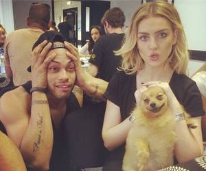 little mix, perrie edwards, and hatchi image