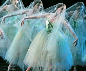 ballet, dance, and giselle image