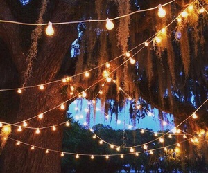 lights, candles, and dawn image