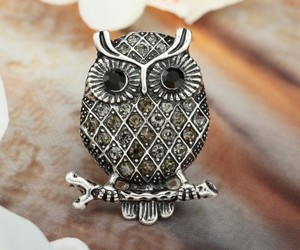 crystal owl rings, owl cocktail rings, and owl stretch rings image