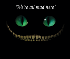 alice in wonderland, mad, and cat image