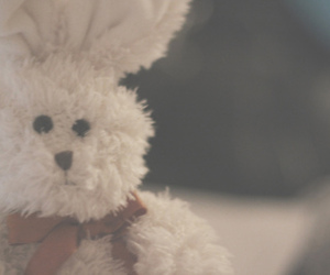 childhood, cute, and teddy image