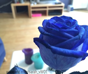 blue rose, candles, and wallpaper image