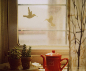 birds, tea, and window image