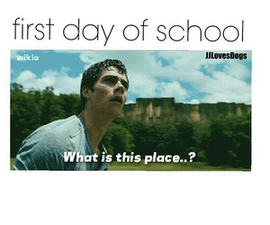 school, funny, and lol image