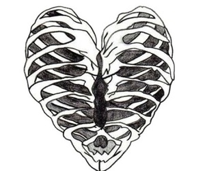 heart, bones, and tumblr image