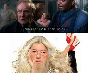 fashion, funny, and dumbledore image
