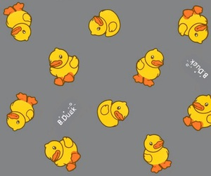 duck, yellow, and background image