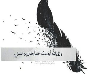 سماء, تمبلر, and امنياتي image