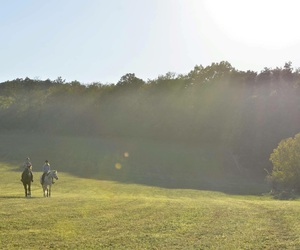 adventure, equestrian, and experience image