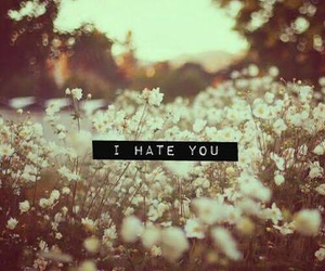 go away, hate, and you image