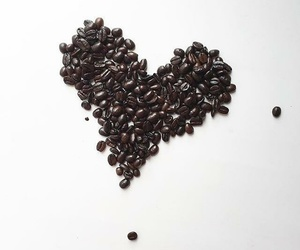 coffee, coffee beans, and chicchi image