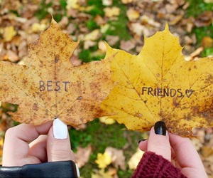 bff, leaves, and friends image