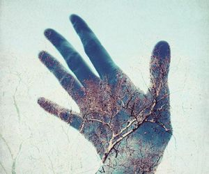 tree, hand, and indie image