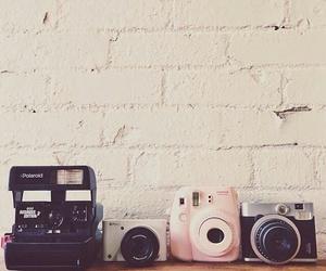 camera, vintage, and polaroid image