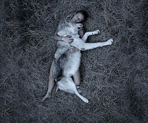 girl, wolf, and nature image