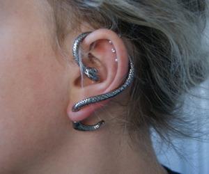 snake, ear piercings, and Piercings image