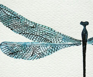 art, blue, and dragonfly image
