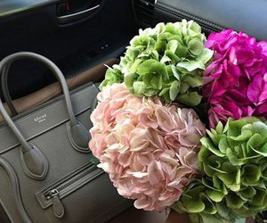flowers, beauty, and celine image
