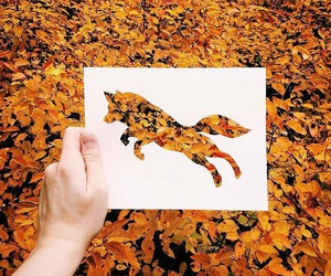 autumn, fox, and art image