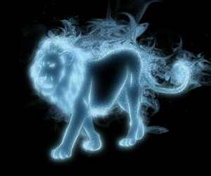 harry potter, lion, and patronus image