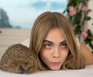 cara delevingne, model, and hedgehog image