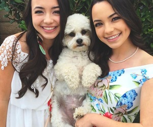 tiger and merrelltwins image