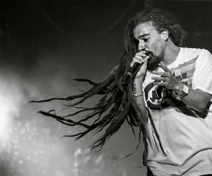 dreads, reggae, and singer image
