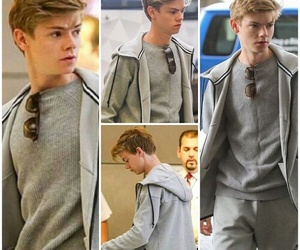 newt, tbs, and the scorch trials image