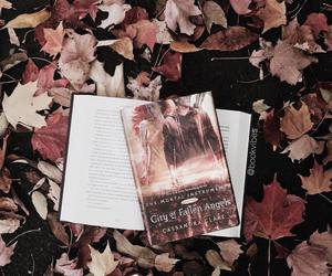 book, autumn, and the mortal instruments image