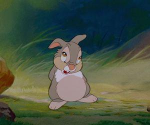 disney, rabbit, and bambi image