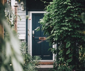 green, home, and nature image