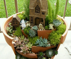 plants, nature, and garden image