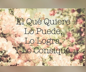 floral, flores, and quotes image