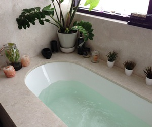 plants, bath, and water image