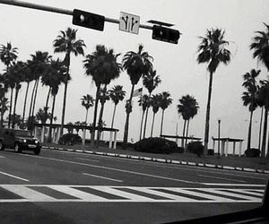 b&w, beach, and california image