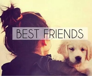 dog, friends, and best friends image