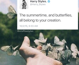 butterfly, tweet, and hand image